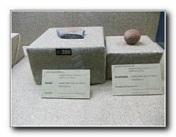 exponats hynafol